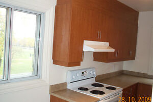 IMMEUBLE ENTIEREMENT RENOVE/FULLY RENOVATED BUILDING-VILLERAY