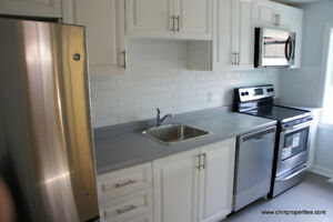 Newly Renovated 2 Bedrooms, close to Downtown, 403, GO Train Stn