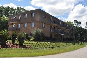 Midland Park Place Apartments -> Bachelor Available Aug 1