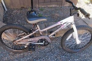 """Boys 20"""" Norco Bike--Great for the Summer!"""