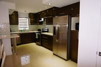 New Luxury town house for rent