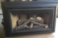 Napolean Gas Fireplace Insert