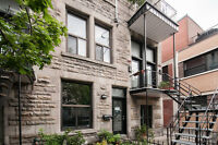 Grand 61/2 Mile End/ Plateau Mont-Royal