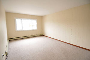 Quiet, affordable, 1 bedroom, Forest Hills area