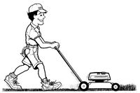 Lawn cutting,maintenance and minor landscaping