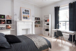 NEWLY RENOVATED & FURNISHED student apartment! MAY 1ST