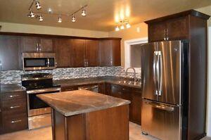 Nice house with dream kitchen in great neighborhood Regina Regina Area image 1