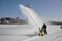 Snowblower and other small engine repair service!