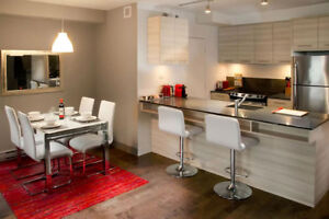 Downtown 2 BR FURNISHED GORGEOUS CONDO w POOL and GYM
