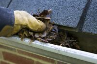 Cheapest gutter cleaning and moss removal in town email for est.