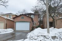 One bedroom basement appartment in Richmond Hill