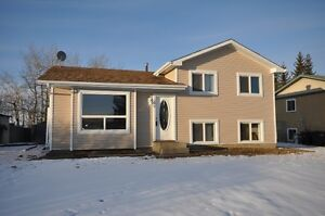 Fully Finished 4 Level Split Features 6 BEDROOMS & 2.5 bathrooms