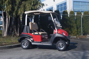 NEW AGT Zephyr 2 Electric Cart - RSC Custom Golf Carts