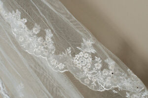Ivory veil with lace scalloped edge, from David's Bridal