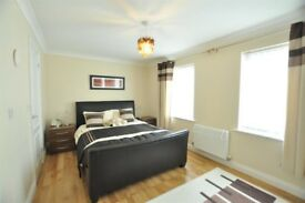 Double en-suite bedroom available for professional-full time working individual or couple