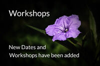 Photography Workshops 23 May - 20 June 2015 - Each Saturday