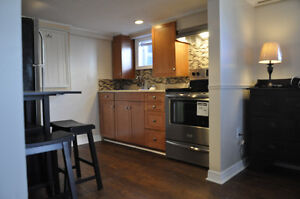 Newly Renovated Apartment in Centre St.John's