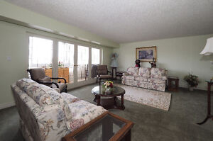 Central Location, Beautiful Home .... GREAT VALUE Kitchener / Waterloo Kitchener Area image 3