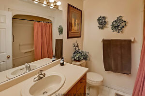 Open Concept Raised Ranch to Sell London Ontario image 7