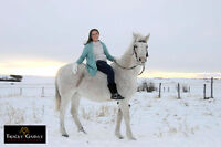 Photography Services Lloydminster - Wainwright and area