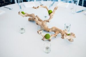 FRESHWATER DRIFTWOOD PIECES FOR CRAFTS,DECOR,GARDENS AND PROJECT