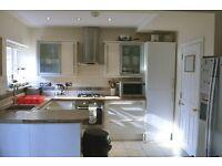 HUGE 4m x 3.5m double in clean, luxury house (inc bills) !!