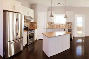 Factory direct price, custom cabinet doors and cabinets