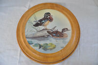 ASSIETTE DE COLLECTION CANARDS DES BOIS GLEN LOATES 1980