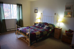 ROOM available -  September to December