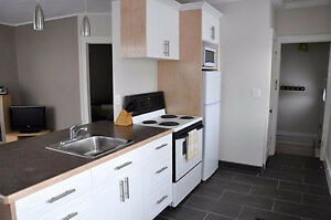 Fully-furnished one-bedroom available in Cathedral! Regina Regina Area image 2