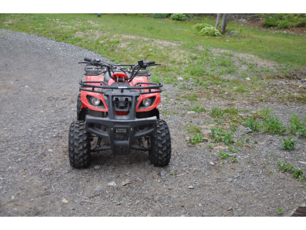 Used 2010 Other Baja Wilderness Trail WD90