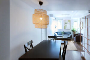 furnished downtown perfect for Mcgill Concordia students 2 share