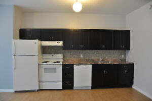 Bright, Spacious 2 Bedroom - PET FRIENDLY - BRAND NEW!