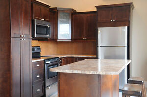 NEW KITCHEN CABINETS WITH FINANCING OPTIONS!!