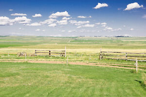 160 acre Ranch with furnished home Moose Jaw Regina Area image 6
