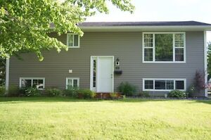 Cute 3+1 split entry in Marysville with income potential!