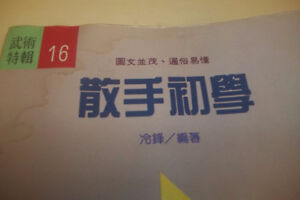JAPANESE or Chinese -KUNG-FU Books