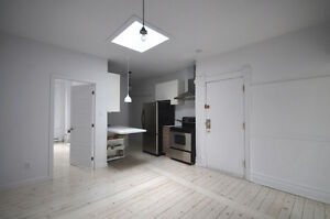 Naturally lit apartment in the heart of the Plateau