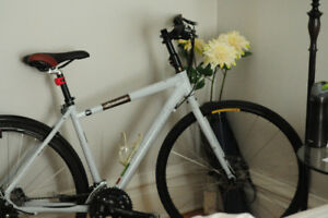 Unisex hybrid bike