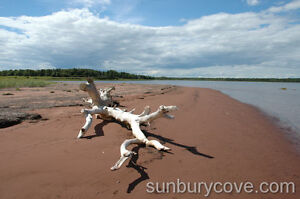 Sunbury Cove Estates Waterfront Lots