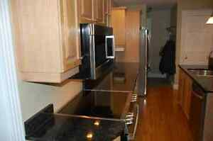 Oak Cabinets with Granite countertop