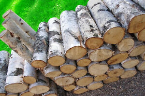 Cord of Birch and other Firewood