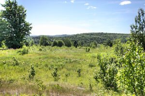 REDUCED PRICE! PANORAMIC VIEW ON 10 ACRES, BANCROFT ON Peterborough Peterborough Area image 2