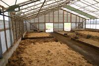 Certificated Organic farm. Dairy - Equine - Cash crop.