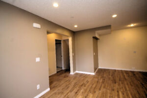 1 Bedroom + Den Basement App. 800 + Utilities