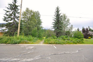 Vacant Lot / Real Estate Opportunity in Golden, BC