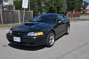 2001 Ford Mustang Bullitt Coupe (2 door)
