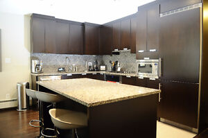Executive New Townhouse For Rent In