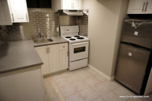Brand New Renovated 1 Bedroom (All Inclusive), close to Downtown