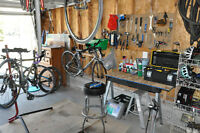 Bike Tune up/Repair
